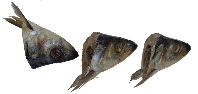httpvgommerstadtnarodru2014_zapolnitfly_herrings_smalljpg